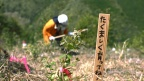 "Giving back to nature - a large-scale treeplanting at ""Nagaki No Mori"""